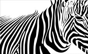 Conversión a Blanco y Negro (parte 3)